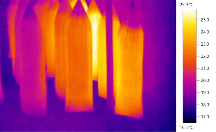 FFMF 14 Thermal Imaging varying temperatures in incubation phase